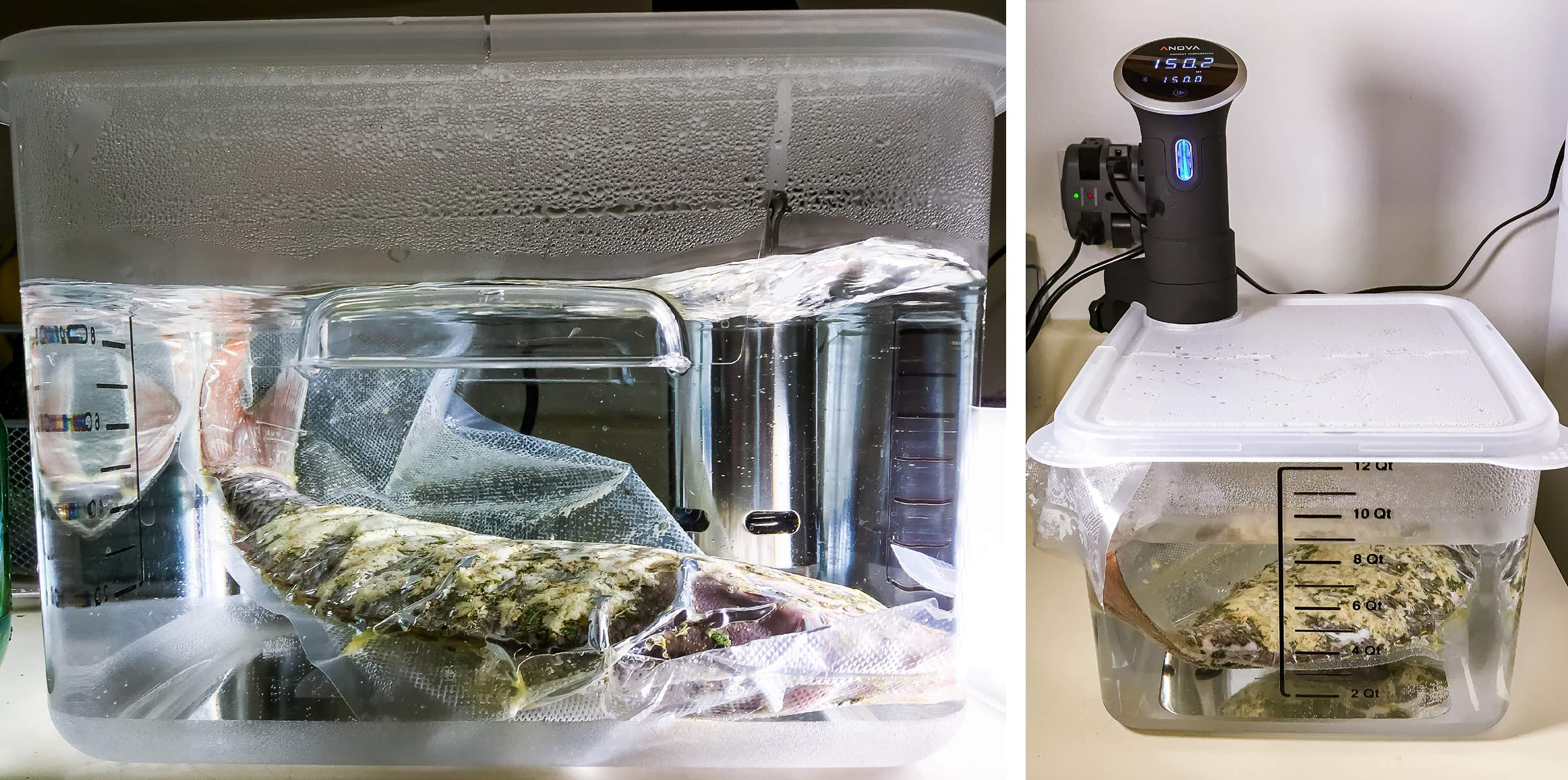 Sous Vide Fish Recipe 130°F for 1 hour Red Snapper